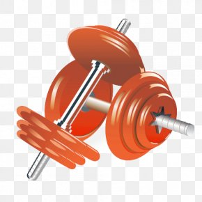 Barbell Material - Dumbbell Physical Exercise Weight Training Illustration PNG