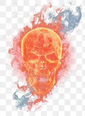 Flame Skull Picture Material - Flame Skull PNG