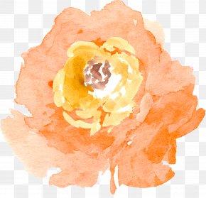 Watercolor Flowers - Watercolor Painting Flower Desktop Wallpaper Clip Art PNG