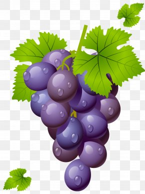 Grape With Leaves Clipart Picture - Wine Common Grape Vine Grape Leaves Clip Art PNG
