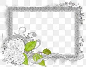 Silver Frame - Cut Flowers Floral Design Floristry Rose PNG