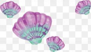 Watercolor Purple Shells - Watercolor Painting Drawing Download PNG