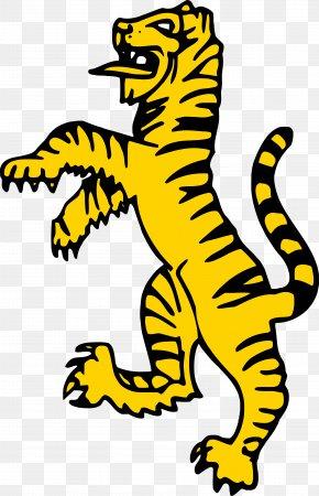 Tiger - Tiger Clip Art Drawing Image Lion PNG