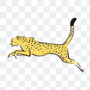 Leopard - Cheetah Leopard Tiger Felidae PNG