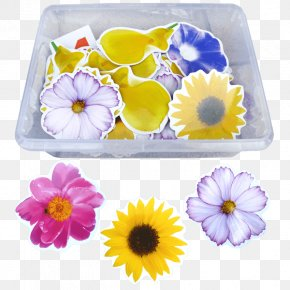 Learning Supplies - Petal Floristry Violet Cut Flowers PNG