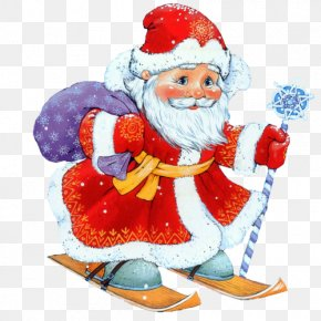 Santa Claus - New Year Santa Claus Christmas Ded Moroz Clip Art PNG