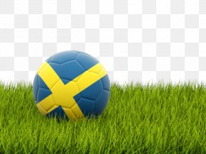 Football Sweden - Sweden National Football Team UEFA Euro 2016 Albania National Football Team World Cup PNG
