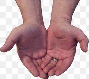 Big Hand Little Hand - Hand Model Finger Thumb PNG