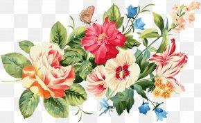 Flower - Centifolia Roses Garden Roses Cut Flowers PNG