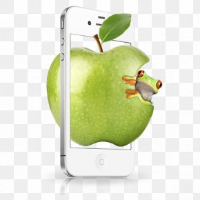 Apple Apple Phone Box Blue Frog - IPhone 4 IPhone 5 Apple Google Images PNG