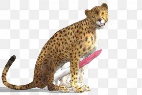 Cheetah - Cheetah Leopard Jaguar PNG