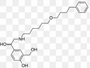 Polysorbate 80 Structure - Beta2-adrenergic Agonist Beta-2 Adrenergic Receptor Biochemistry Asthma Pharmaceutical Drug PNG