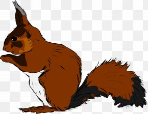 Brown Squirrel - Squirrel Clip Art PNG