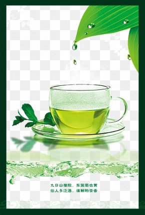 Green Tea Cup - Green Tea Teacup Longjing Tea PNG