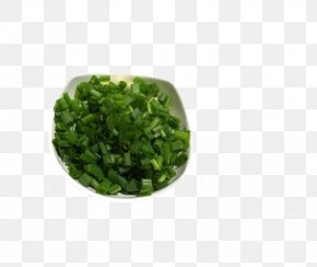A Small Dish Of Green Onion - Dish Condiment Cuisine Allium Fistulosum PNG