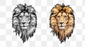 Two Hand-painted Lion Head - Lions Head Lionhead Rabbit PNG