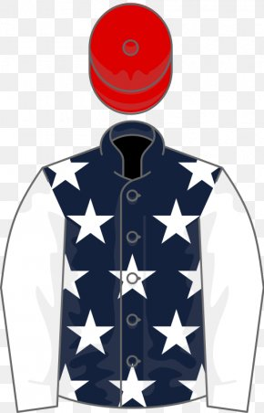 United States - United States T-shirt Horse Houghton Mares' Chase Sleeve PNG