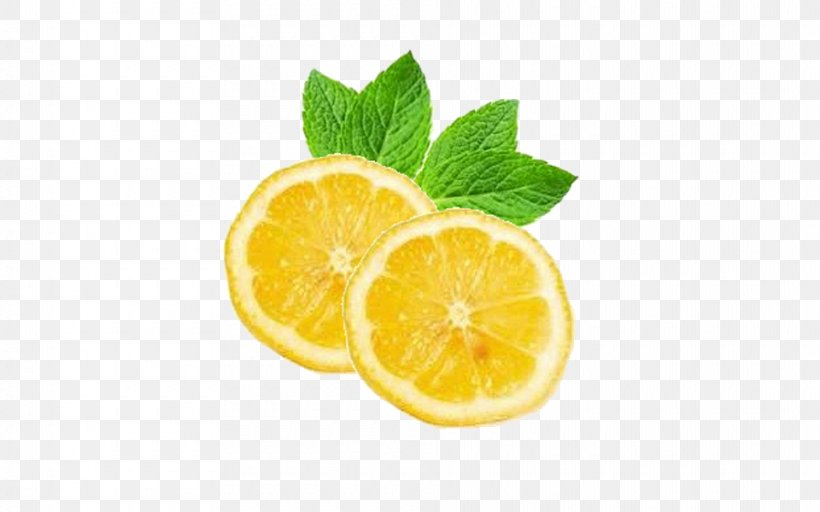 Juice When Life Gives You Lemons, Make Lemonade Mint, PNG, 960x600px, Juice, Bitter Orange, Citric Acid, Citron, Citrus Download Free