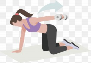 Beauty Coach With A Single Dumbbell Exercise - Dumbbell Physical Exercise Physical Fitness Arm Torso PNG