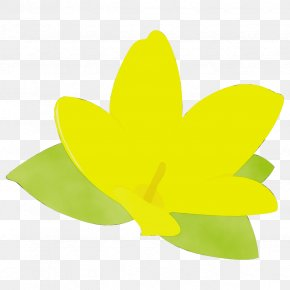 Wood Sorrel Family Symbol - Green Yellow Leaf Wheel Plant PNG