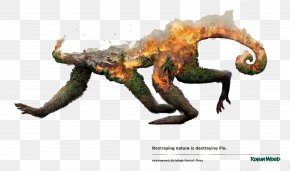 Creative Posters - Advertising Campaign Disappearing Animals Grabarz & Partner Art Director PNG