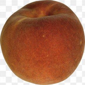 Peach Image - Peach Portrait Of Madame Renoir Apricot Bottle PNG