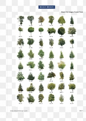 Isometric Tree - Paint Tool SAI Image Vector Graphics Illustration PNG