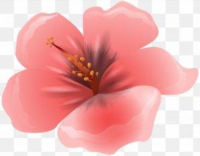Large Pink Flower Clipart Image - Flower Pink Clip Art PNG