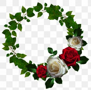 Round Roses Floral Ornament Wreath - Picture Frame Flower Clip Art PNG
