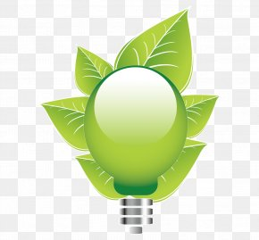 Energy Saving - Vector Graphics Image JPEG Incandescent Light Bulb Energy Conservation PNG