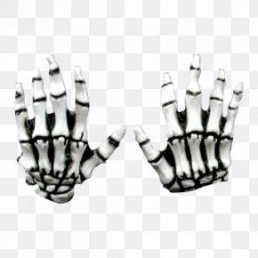 Skeleton Hand - Human Skeleton Bone Hand Finger PNG