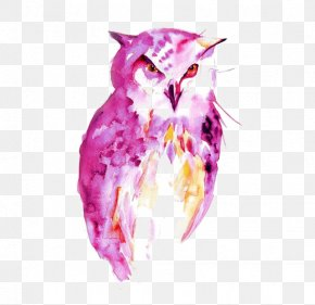 Owl - Owl Watercolor Painting Drawing Portrait PNG