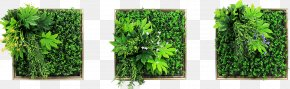 Green Wall - Green Wall Wall Decal Picture Frames Painting PNG