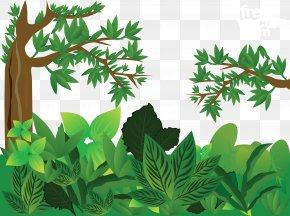 Green Jungle Vector - Forest Euclidean Vector PNG