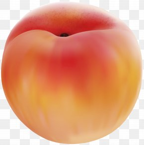 Peach Clip Art Image - Peach Fruit Clip Art PNG