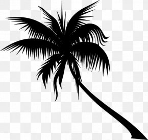 Clip Art Tree Dypsis Decaryi Areca Palm PNG