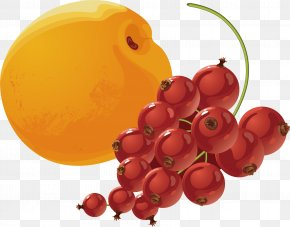 Apricot And Soda Material - Apricot Armenian Food Berry PNG