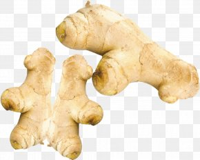 Ginger - Root Vegetables Ginger Ingredient PNG
