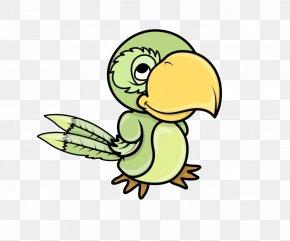 Birds - Pirate Parrot Piracy Clip Art PNG