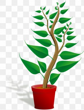 Plant Growing Cliparts - Plant Free Content Clip Art PNG