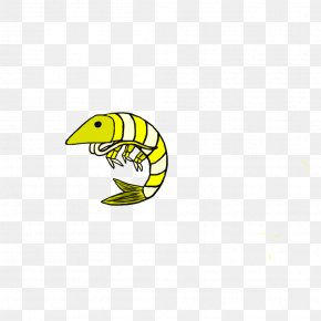 Prawn - Cartoon Organism Plant Clip Art PNG