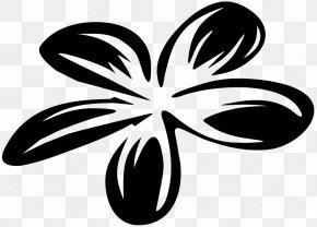 Surf Board - Petal Leaf Flowering Plant Clip Art PNG