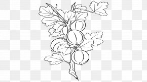 Amla - Black And White Visual Arts Drawing Floral Design PNG
