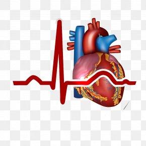 Heart, - Myocardial Infarction Heart Cardiovascular Disease Symptom PNG