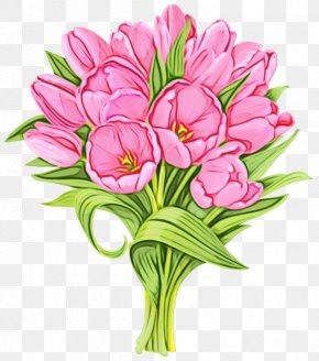 Tulip Bouquet - Flower Flowering Plant Plant Cut Flowers Pink PNG