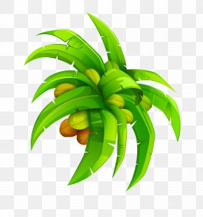 Cartoon Coconut Leaf Coconut Vector - Leaf Coconut Euclidean Vector PNG