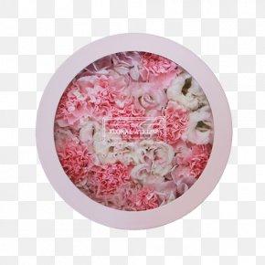 Blush Floral - Pink M PNG