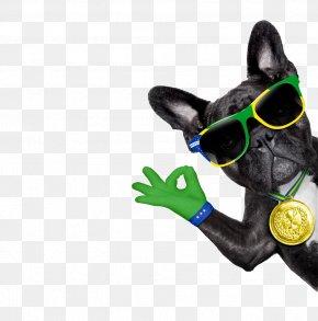 Dog - French Bulldog Bully Kutta Puppy Stock Photography PNG