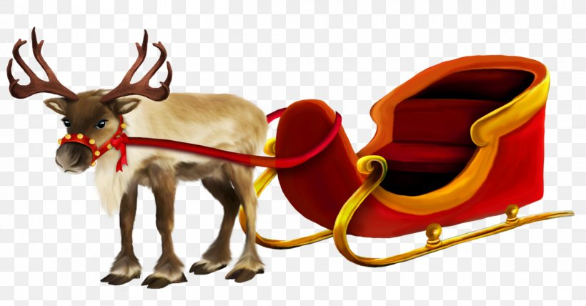 Christmas Reindeer Png.Rudolph The Red Nosed Reindeer Png 1260x658px Rudolph