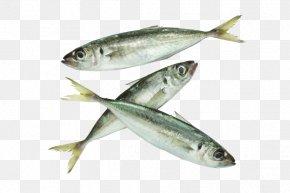 Filete De Caldeirada De Peixe - Japanese Horse Mackerel Atlantic Horse Mackerel Fish Seafood PNG